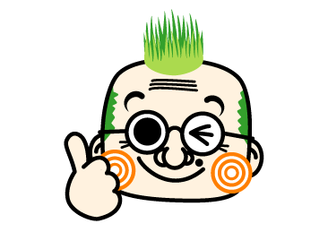 シバ芝生④-2