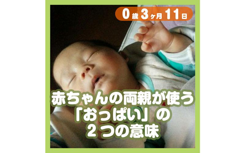 0-03-11_赤ちゃんの両親が使う「おっぱい」の2つの意味_800