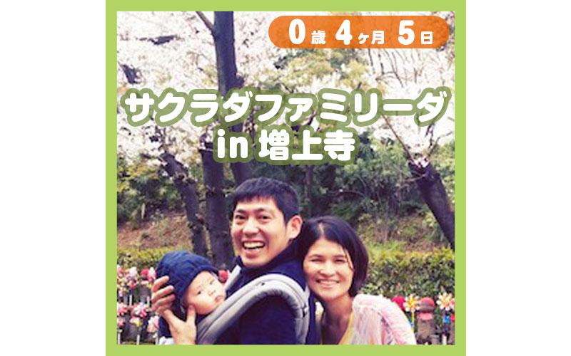 0-04-05_サクラダファミリーダin増上寺_800
