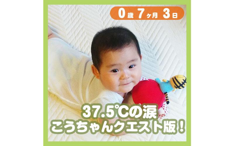 0-07-03_37.5度の涙、こうちゃんクエスト版!_800