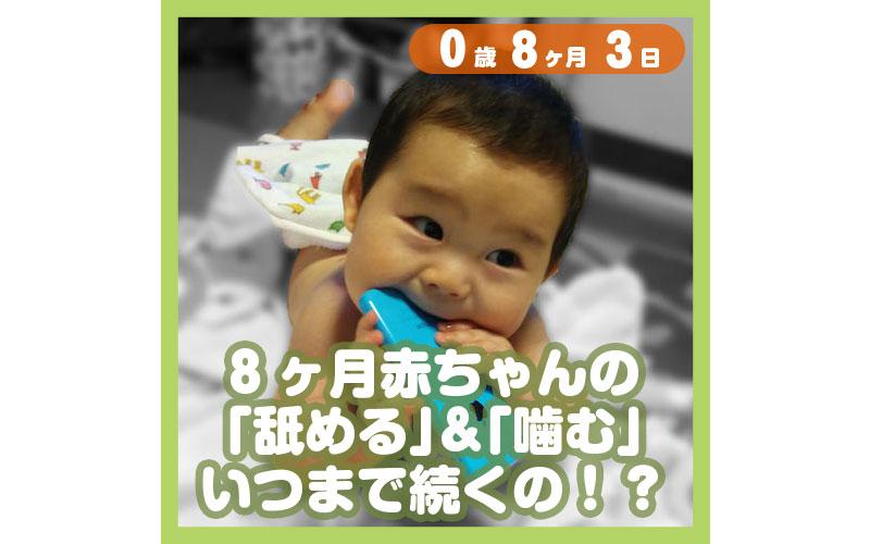 0-08-03_8ヶ月赤ちゃんの「舐める」&「噛む」、いつまで続くの!?_800