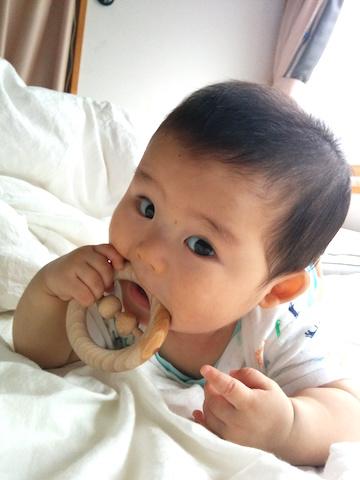 7ヶ月赤ちゃんかむ3
