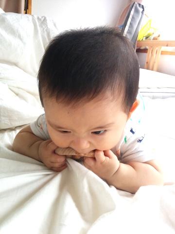 7ヶ月赤ちゃんかむ4