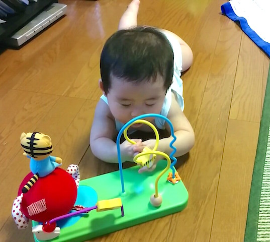 8ヶ月,赤ちゃん,しまじろう