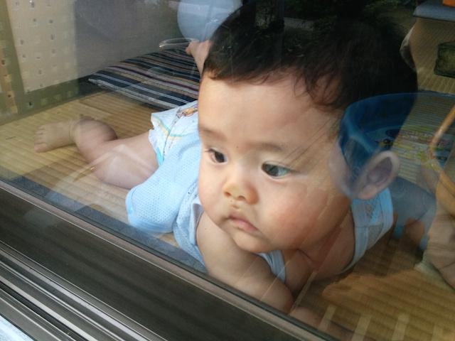 赤ちゃん,窓,変顔,ヘン,がお