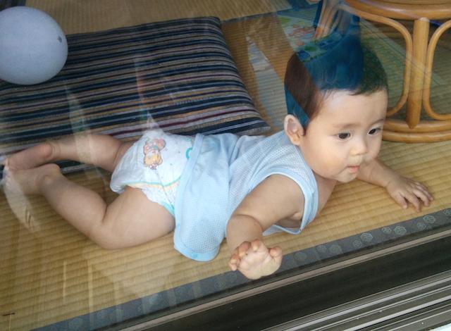 赤ちゃん,8ヶ月,窓越し