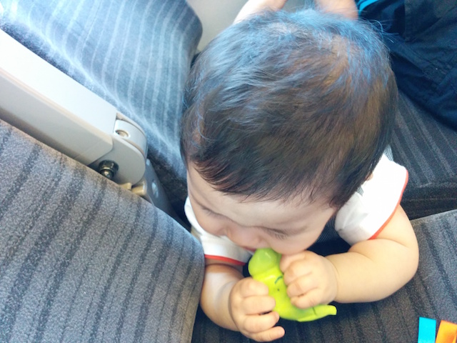 赤ちゃん,8ヶ月,8カ月,新幹線,電車,ぐずり,泣き止ませ