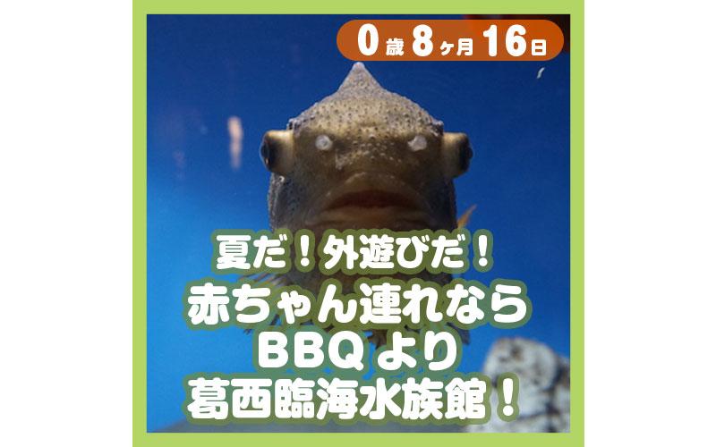0-08-16_夏だ!外遊びだ!赤ちゃん連れならBBQより葛西臨海水族館!_800
