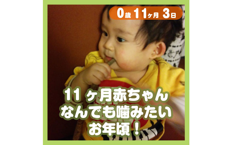 0-11-03_11ヶ月赤ちゃん、なんでも噛みたいお年頃!_800