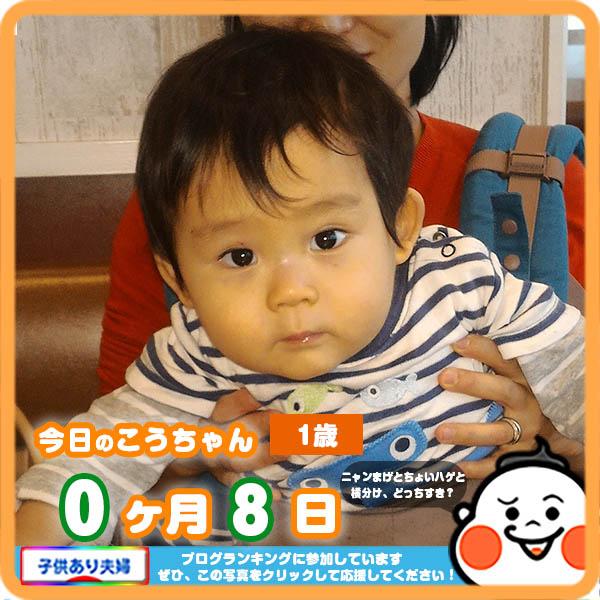 1歳0ヶ月8日