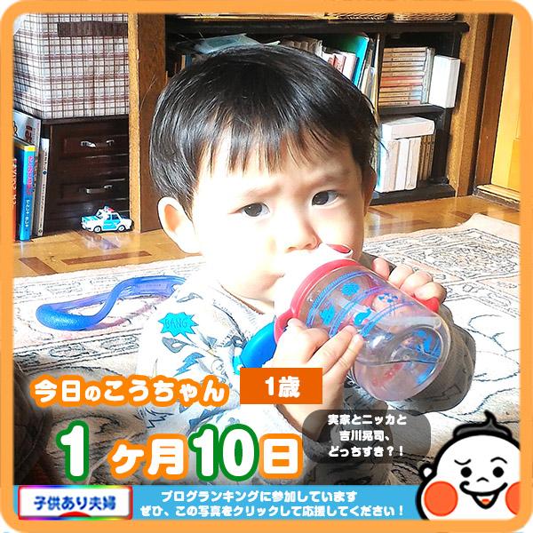 1歳1ヶ月10日