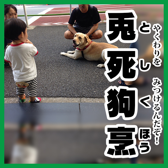 07兎死狗烹