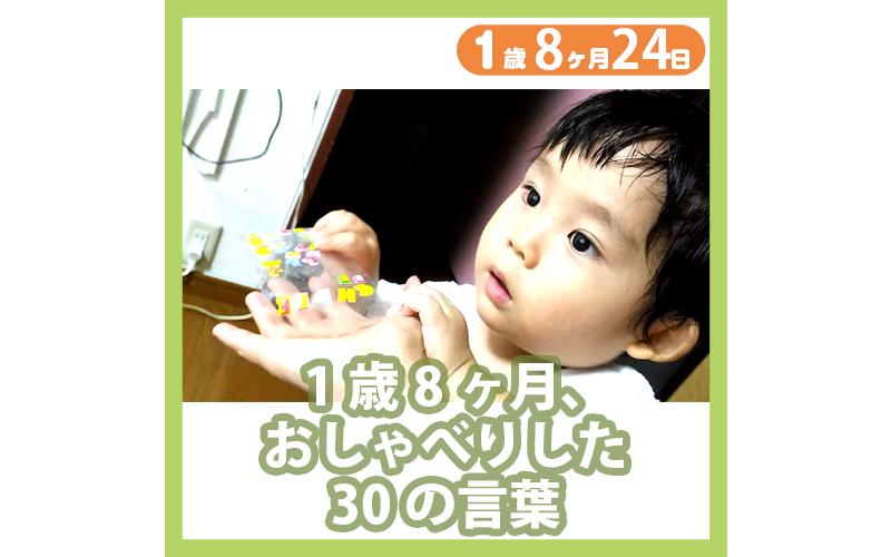 1歳8ヶ月24日