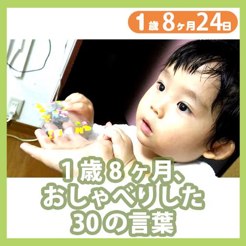 1歳8ヶ月24日i