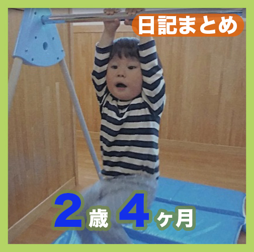 2歳4ヶ月日記まとめ
