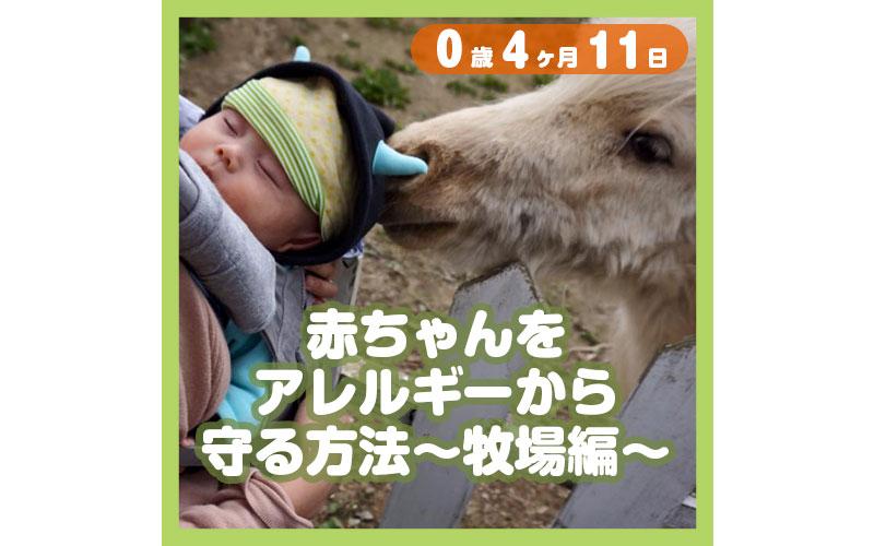 0-04-11_赤ちゃんをアレルギーから守る方法〜牧場編〜_800