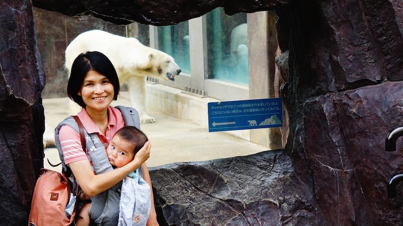 上野動物園,しろくま,赤ちゃん,エルゴ,ママ