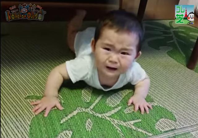 掃除機,赤ちゃん