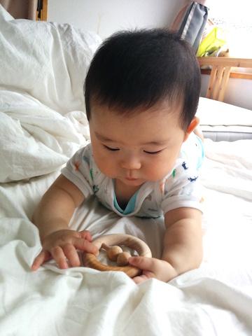 7ヶ月赤ちゃんかむ