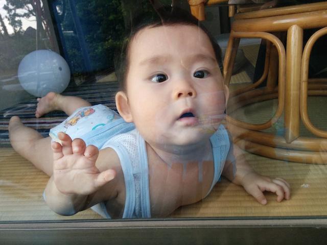 赤ちゃん,生後8ヶ月,窓越し