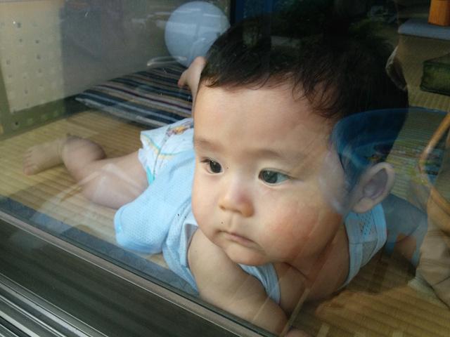 赤ちゃん,窓越し,8ヶ月
