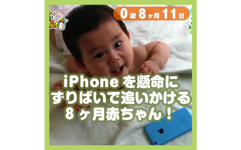 0-08-11_iPhoneを懸命にずりばいで追いかける8ヶ月赤ちゃん!_800