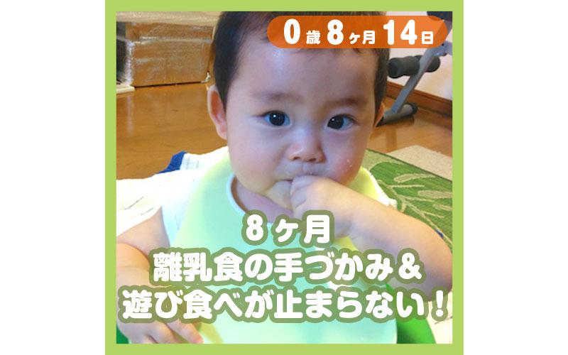 0-08-14_8ヶ月、離乳食の手づかみ&遊び食べが止まらない!_800