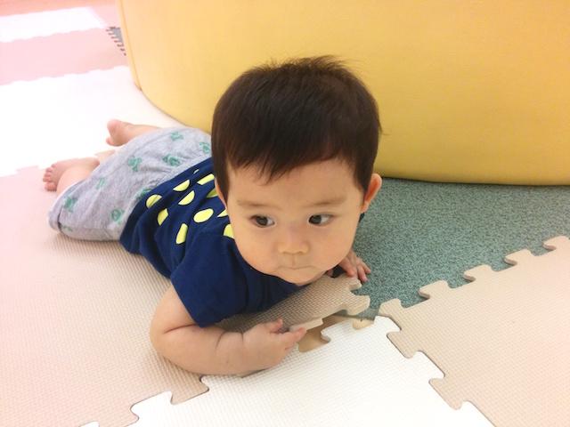 Pokke,赤ちゃん,9ヶ月