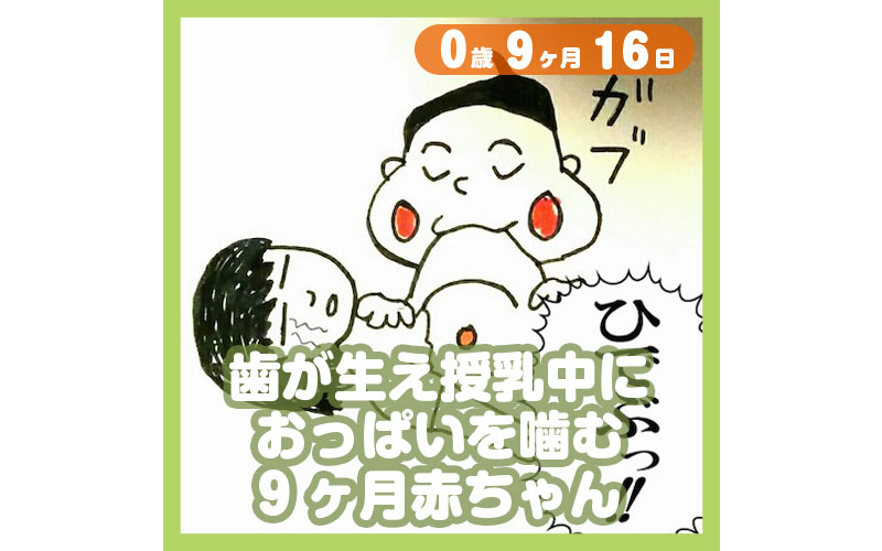 0-09-16_歯が生え、授乳中におっぱいを噛む9ヶ月赤ちゃん_800