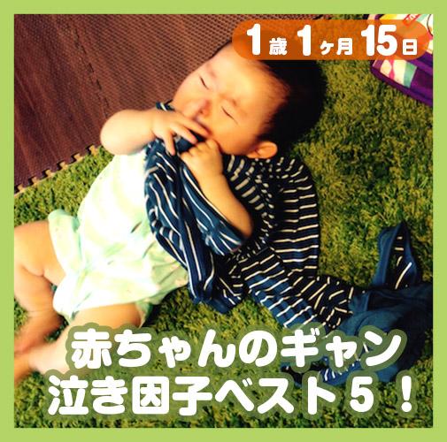 1歳1ヶ月15日