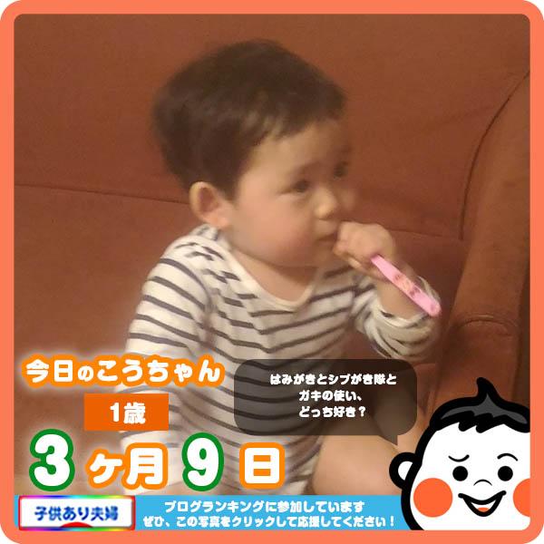 1歳3ヶ月9日