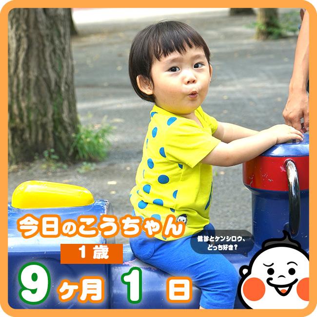 091今日のこうちゃんひな形
