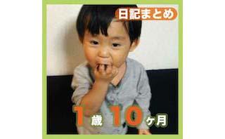 1歳10ヶ月日記まとめ